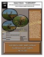2018 AEC Convention Select Elk  & Semen Auction