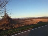 Fiedler Land Auction