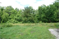 Online Only Real Estate Auction - Vacant Land
