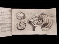 Sale 1015:  Rare Books, Manuscripts, and Ephemera