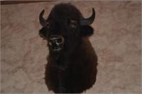 April 13th Codys Closeout Auction
