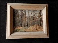 """Oil on board, forest scene, unsigned, height 7"""" X width 9"""""""