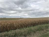 Townsend Farmland