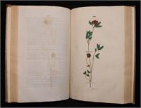 1023: Rare Books in All Fields