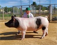 2020 Solano Jr Livestock Booster Auction
