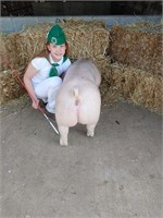 Chico Jr Livestock Auction (Due to Silver Dollar Fair Cancel