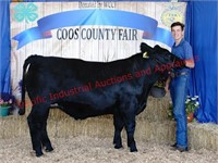 Coos County Youth Livestock Auction