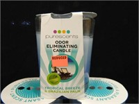 Purescents Odor Eliminating Candles