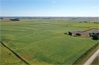 Slota Family - Fantastic Top Quality NW IA Farmland!