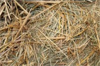 Hay, Bedding, Firewood #39 (9/30/2020)