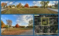 Mon., Nov. 30th LIVE AUCTION Prime Real Estate Sullivan, IL
