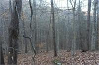 89.608 Acres Watson Hollow Raod
