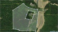 29 ACRES MCNAIRY COUNTY BANKRUPTCY