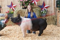 Coos County Fair Youth Livestock Auction 2021