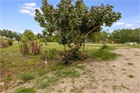 Vacant lot 11; right next to house on 2843 S Biscayne Dr.