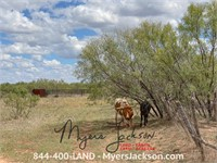 160+/-ac Tract