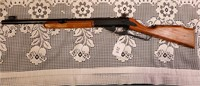 Daisy Pellet Rifle