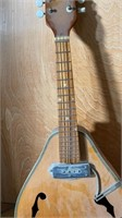 Early Electric Mandolin