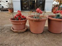 8 - Flower Pots