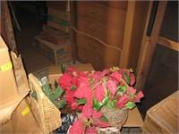 Boxes of poinsettias