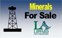 8/16 Burnet, Nelson Minerals