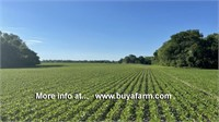 St.Clair County IL 55 ac Cropland & Wooded