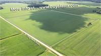 Saline County IL Tillable 40 ac