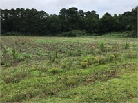 Super 185 acres in One Harnett County Farm!