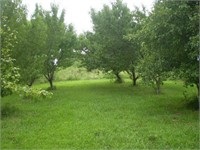 38 ac +/- Country Living in Cooper County, MO