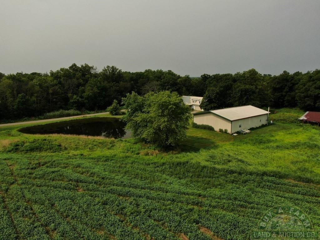 Wayne County IL 40+- Acres & Home