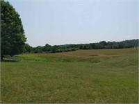 Land for Sale at Auction in Pearisburg VA