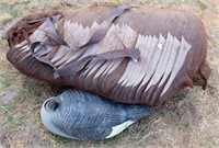 Goose/Duck Decoys