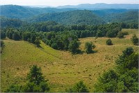 Land for Sale in Dugspur VA at Auction