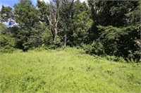 Illinois Farm & Rec Land Auction | Multi Tracts