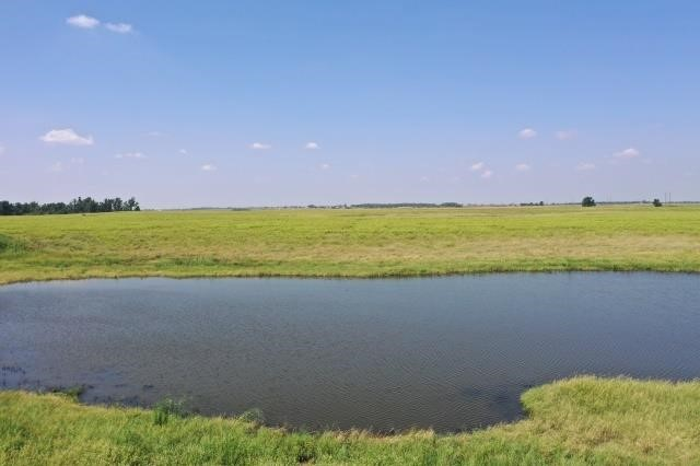 135+/- Acres Grass Pasture * Kingfisher County, OK