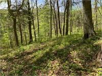 26.59 Acres Off Clinch Mountain Road Eidson TN 37731