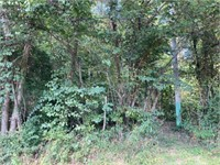 4 Acres W Duvall Rd - Bloomington, IN | Monroe Cty