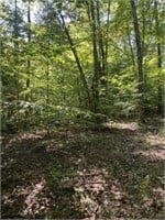 36 ± Acres + Cabin | IN | Hunting / Rec Land